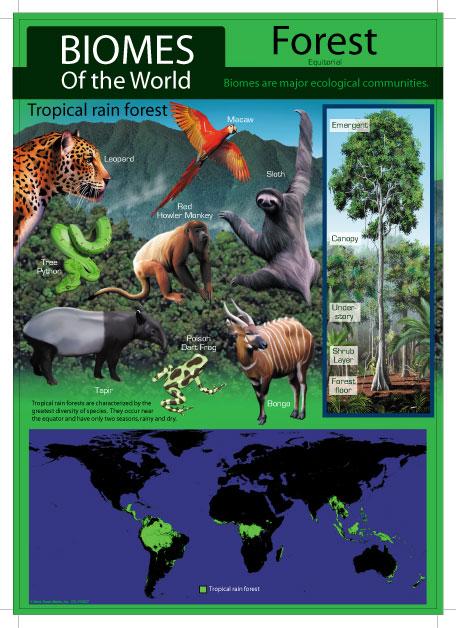 Biomes 1